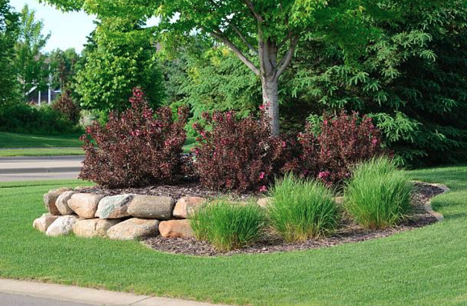 Selecting Shrubs That Fit Your Style