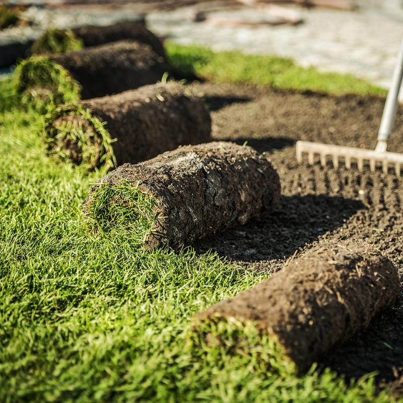 Sodding, Seeding, & Black Dirt